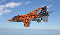 "JAGUAR Gr.3 ""BIG CAT"" Special Colors - Image 1"